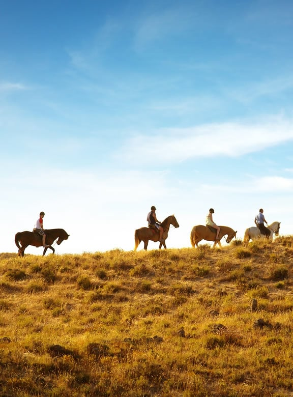 Family riding horses together