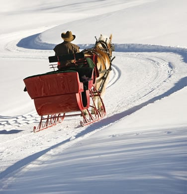 Sleigh going up a snowy mountain