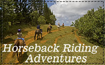 Horseback-Riding-Adventures-New-Menu-Photo